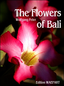 The Flowers of Bali